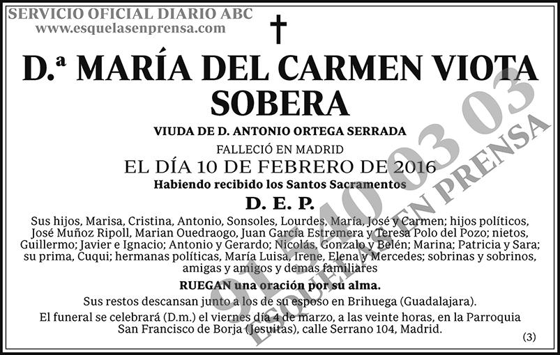 María del Carmen Viota Sobera